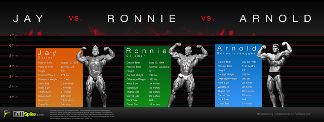 Jay Cutler vs Ronnie Coleman vs Arnold Schwarzenegger stats measurements tale of the tape