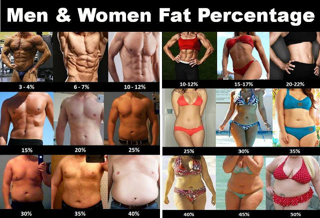 Evaluate Men and Women Body Fat Levels