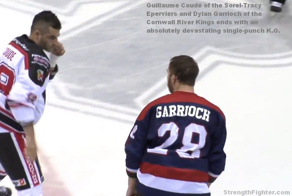 Hockey one-punch knockout