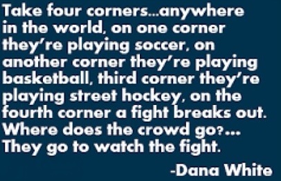 Dana White quote on the popularity of fighting